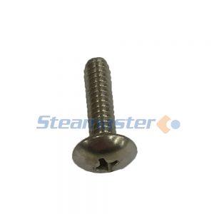 swoop-shoe-screw